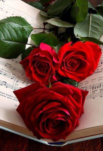 musique ceremonie funeraire obseques funerailles aria catholique enterrement