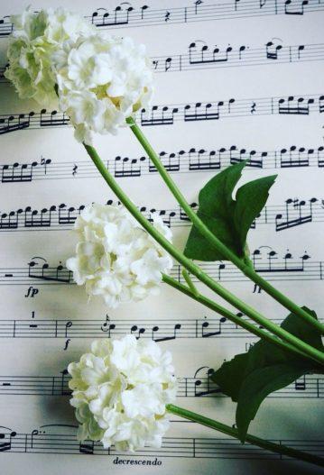 musique enterrement ceremonie funeraire civile laïque obsèques officiant civiles