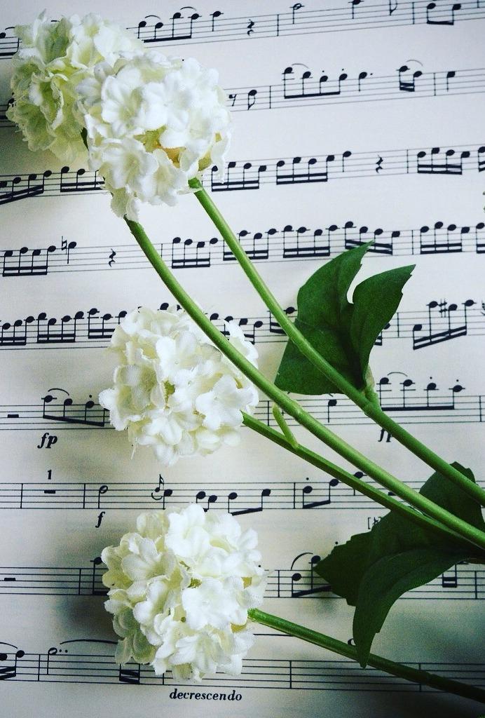 musique enterrement ceremonie funeraire laïque cérémonie laïque obsèques civiles