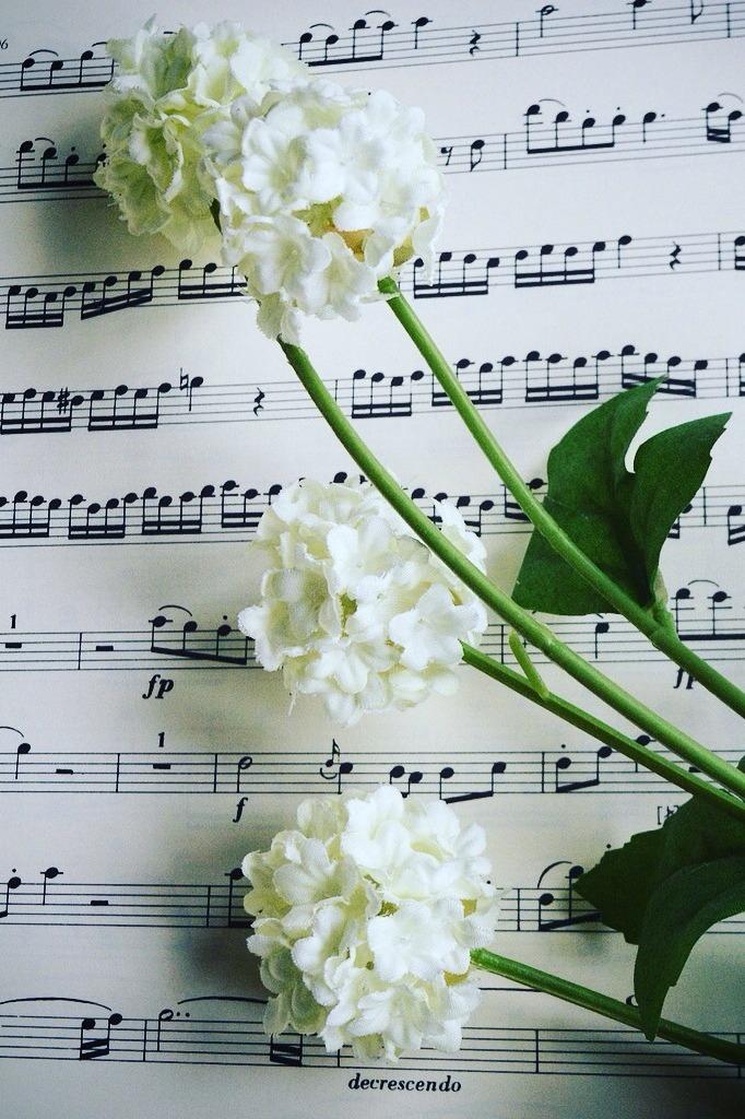 cérémonie funéraire obseques funerailles musique enterrement aria