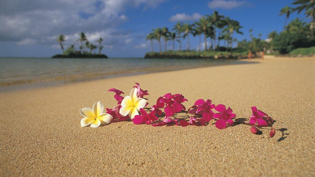 aria quand je partirai texte enterrement hawaien