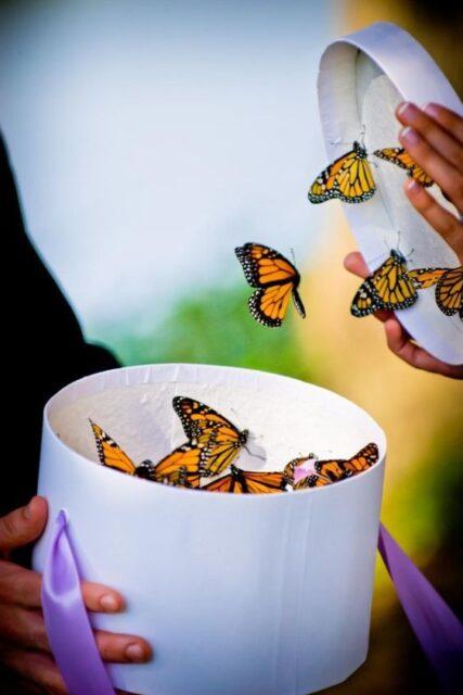 aria rituel cérémonie funéraire lâcher de papillons inhumation cimetière